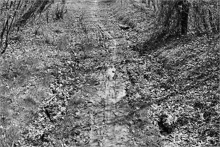 »Artaxs Weg«, aus der Serie »Der Elmgeist«, Foto © Friedhelm Denkeler 1980