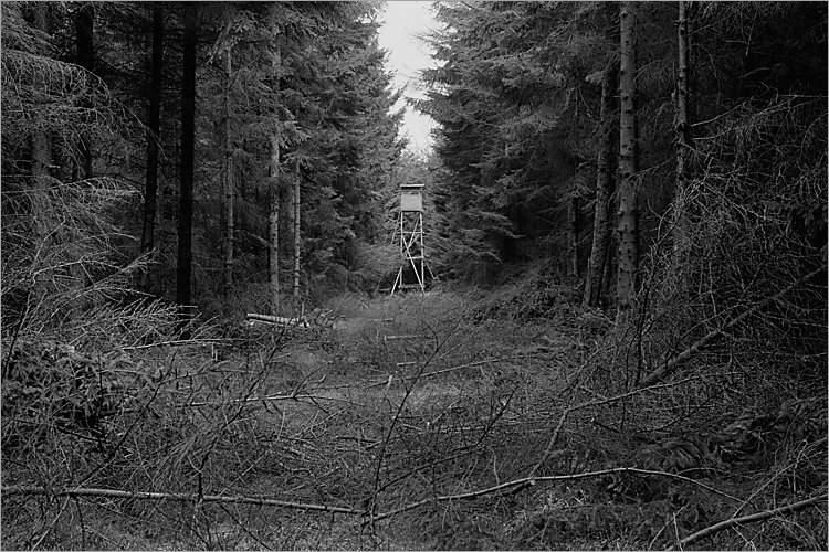 »Der Sitz des Försters«, aus der Serie »Der Elmgeist«, Foto © Friedhelm Denkeler 1980