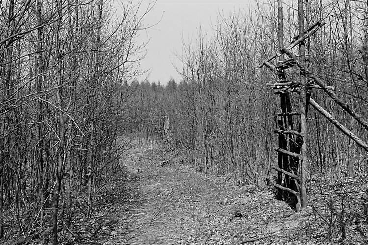 »Der Weg des Elmgeistes I«, aus der Serie »Der Elmgeist«, Foto © Friedhelm Denkeler 1980