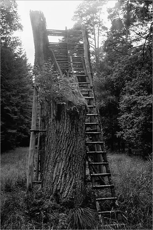 »Das Haus des Elmgeistes II«, aus der Serie »Der Elmgeist«, Foto © Friedhelm Denkeler 1980