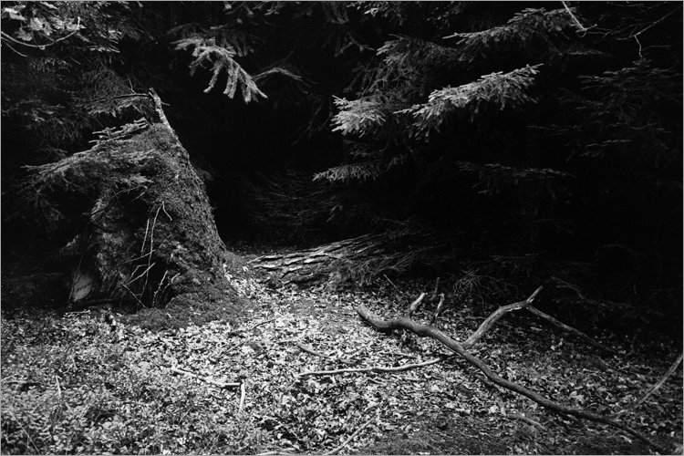 Das Reich des Nachtalbs«, aus der Serie »Der Elmgeist«, Foto © Friedhelm Denkeler 1980