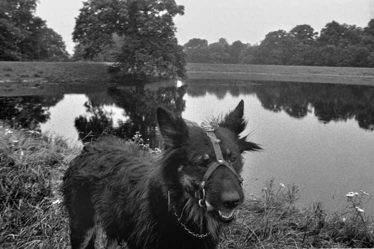 »Am Deich«, Schnackenburg, aus dem Portfolio »Harmonie eines Augenblicks«, Foto © Friedhelm Denkeler 1980