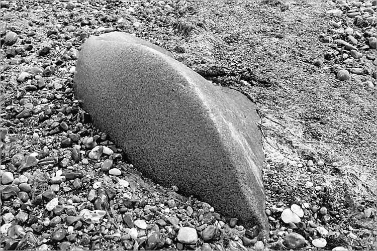»Haifischflosse«, aus dem Portfolio »Møns Klint«, Foto © Friedhelm Denkeler 1983