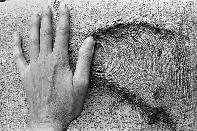 »Verschiebung«, aus dem Portfolio »Møns Klint«, Foto © Friedhelm Denkeler 1983