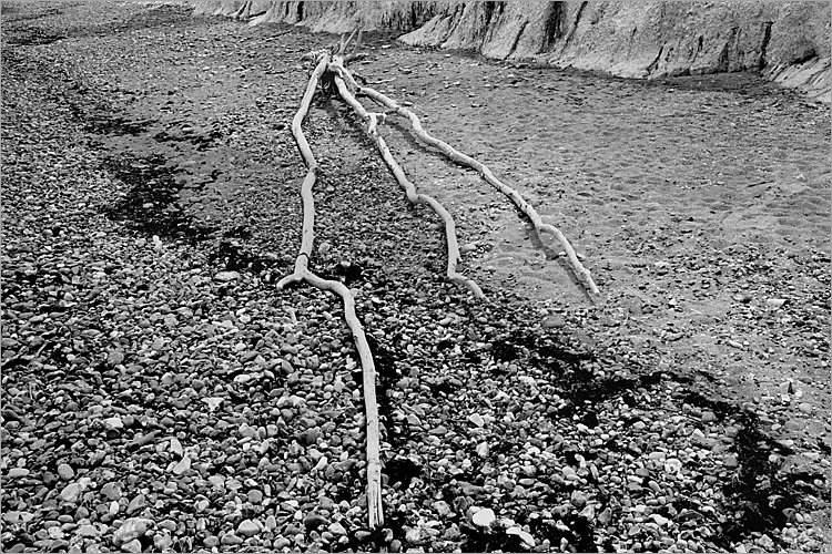 »Dreizack«, aus dem Portfolio »Møns Klint«, Foto © Friedhelm Denkeler 1983