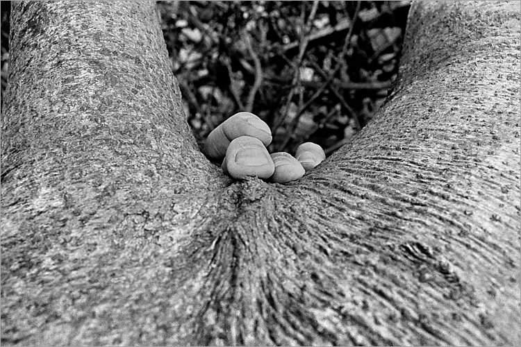»Von hinten«, aus dem Portfolio »Møns Klint«, Foto © Friedhelm Denkeler 1983