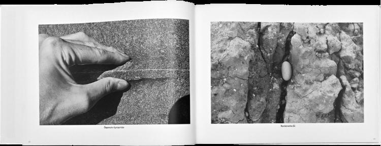 Künstlerbuch »Møns Klint«: Größe 42 x 30 cm, Hardcover, 68 Seiten, 58 Photographien in schwarz-weiß, 2015