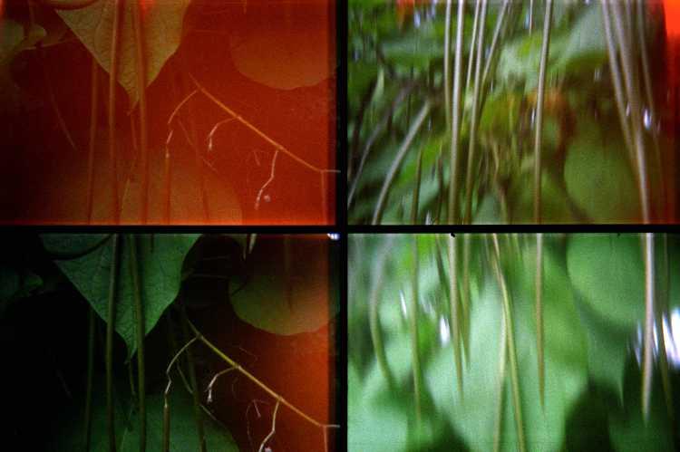 Aus dem Portfolio »Quadrotura – Lomographien«, Foto © Friedhelm Denkeler 2004