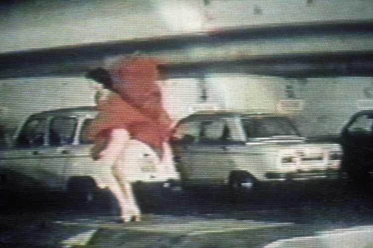 »Die Frau in Rot«, aus dem Portfolio »Die Schöne und das Tier«, Foto © Friedhelm Denkeler 1987