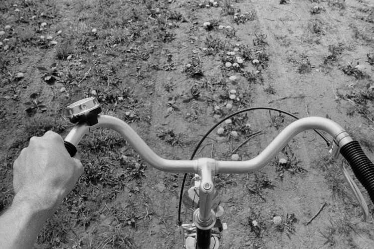 »Auf dem Butterblumenweg«, aus dem Portfolio »Sommer in einer Hand«, Foto © Friedhelm Denkeler 1985