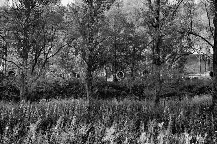 »Waldlagerplatz«, aus dem Portfolio »Köbbinghauser Hammer«, 2014, Foto © Friedhelm Denkeler 2008