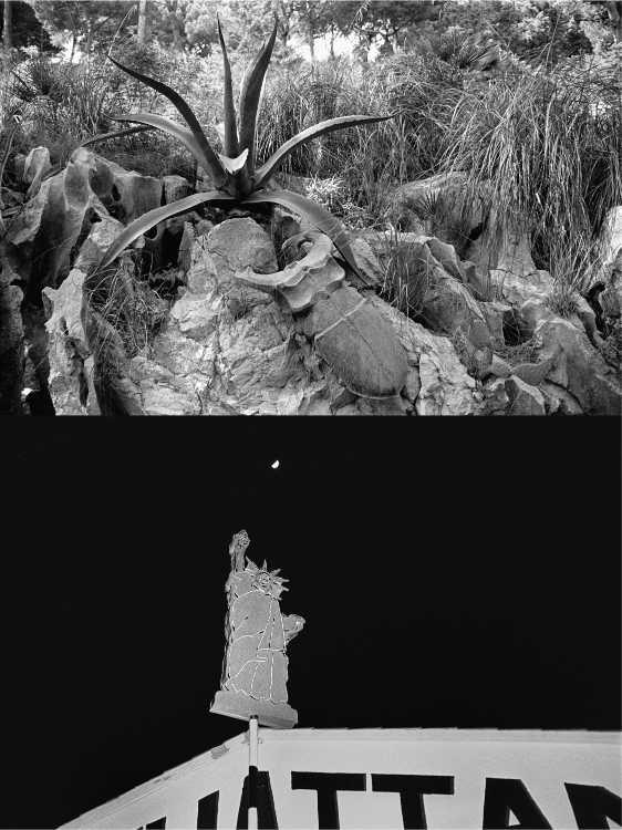 Aus dem Portfolio »Eine Mallorquinische Nacht« (Angriff eines Hirschkäfers/ Manhattan ist überall), Foto © Friedhelm Denkeler 1993