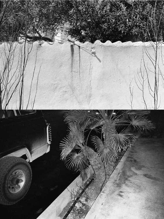 Aus dem Portfolio »Eine Mallorquinische Nacht« (Blick aus dem Hotelfenster/ Palmenparkplatz), Foto © Friedhelm Denkeler 1993