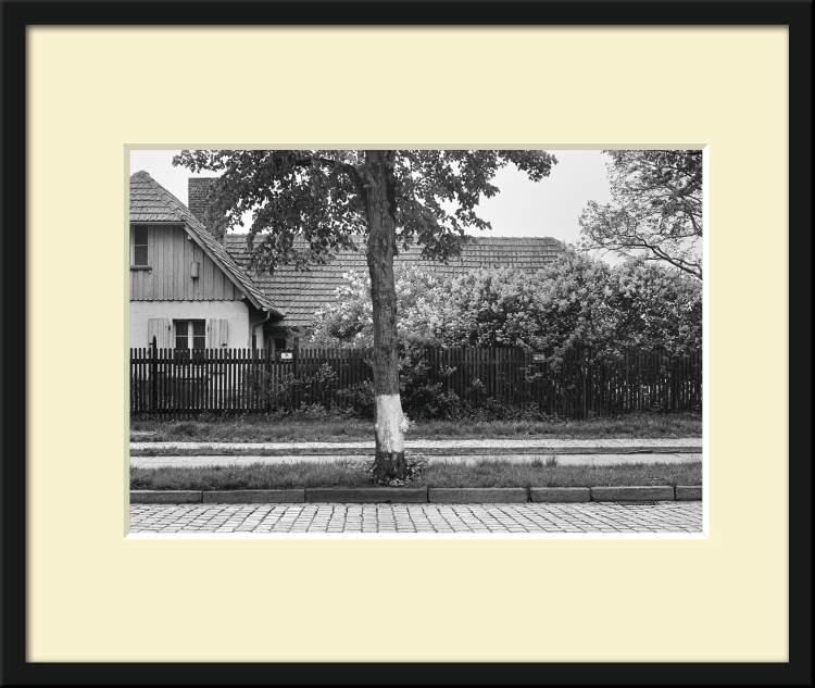 »Blühender Flieder«, aus dem Portfolio »Neunmal Neukölln«: »An der Mauer und am Teltow-Kanal«, Foto © Friedhelm Denkeler