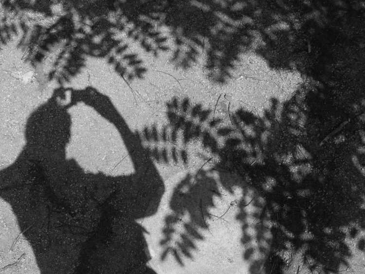 »Selbst mit Rhus Typhina«, Berlin, Berlin, aus dem Portfolio »Schatten und Spiegel», Selbstbildnisse 1976 bis 2020, Foto © Friedhelm Denkeler 2006