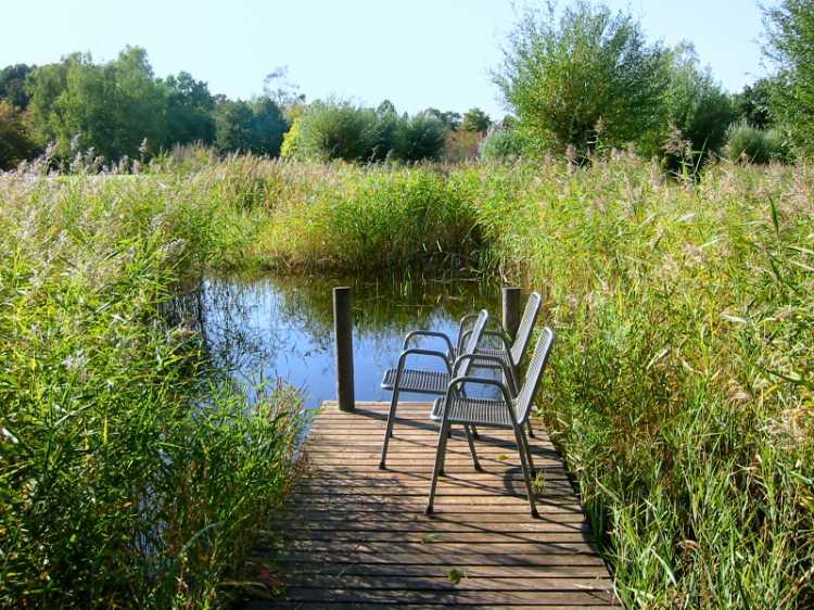 »Sonnenplatz am See«, aus dem Portfolio »Sonntagsbilder«, Foto © Friedhelm Denkeler 2002