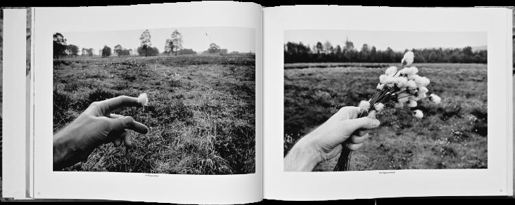 Künstlerbuch »Sommer in einer Hand«, 30x30 cm, 52 Seiten, Hardcover, Selbstverlag © Friedhelm Denkeler 2018