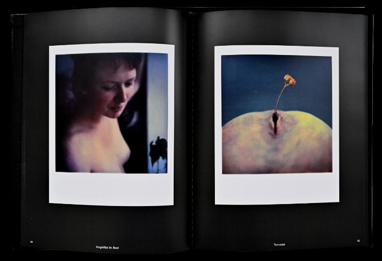 Künstlerbuch »Polaroids – SX-70-Art«, 27x20 cm, 112 Seiten, Hardcover, Selbstverlag © Friedhelm Denkeler 2012
